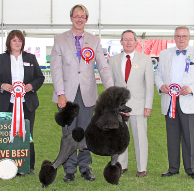 Reserve Best in Show 2011