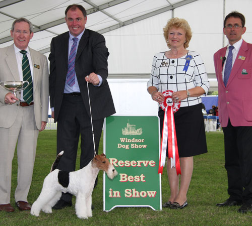 Reserve Best in Show 2014